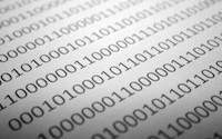 binary characters