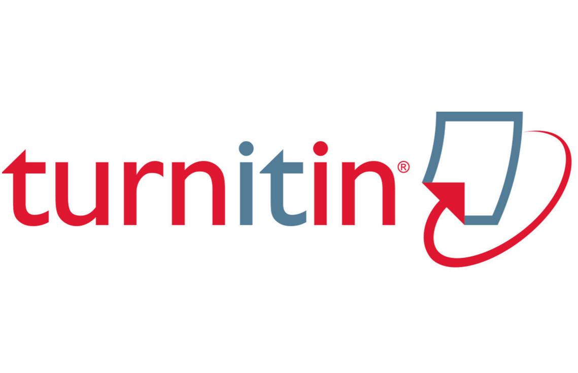 Essays for sale turnitin com